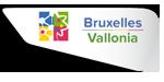 Bruxelles capitale della cultura europea 2015